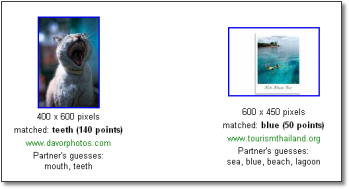 Google Image Labeler Results